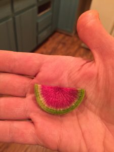 a small sliver of a watermelon radish