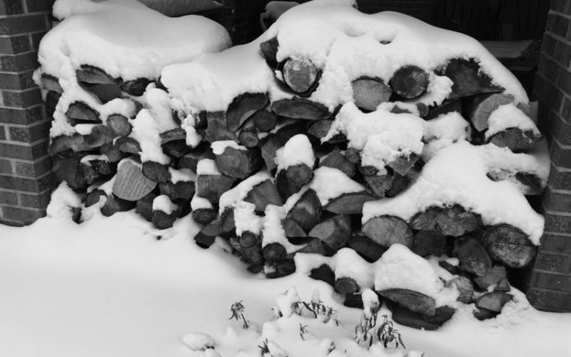 Snow covered stack of wood
